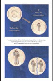 2530 Poster: Transubstantiation