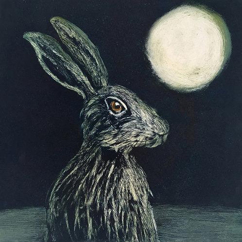 Nikki Braunton - Hare in the moonlight