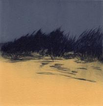 Marram Grass I