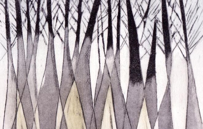 Far Forest