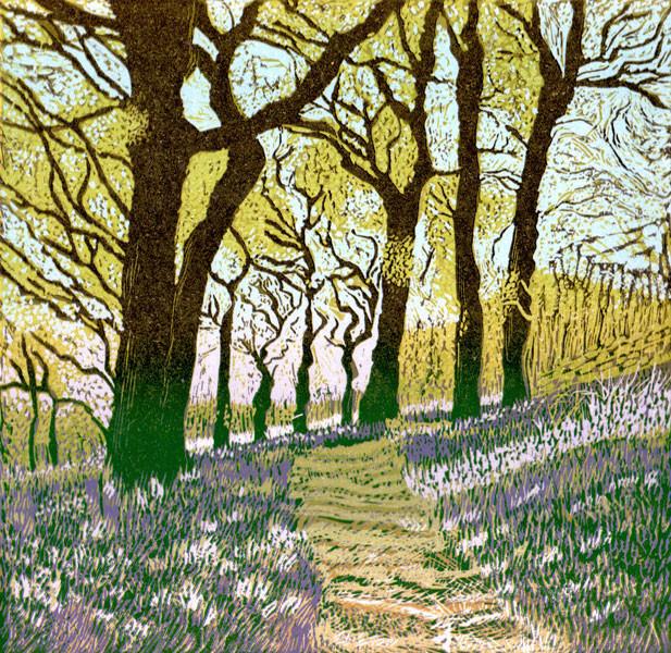 Bluebells in the Oak Wood