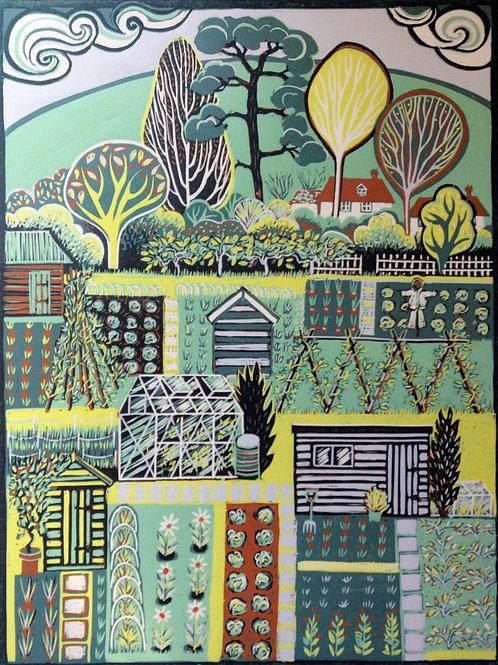 Diana Croft - Allotment Landscape