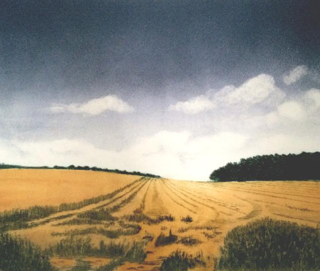 'Late HarvestNo.1'