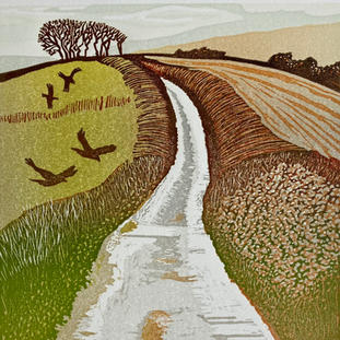 NEW  The Road to Coleton Fishacre