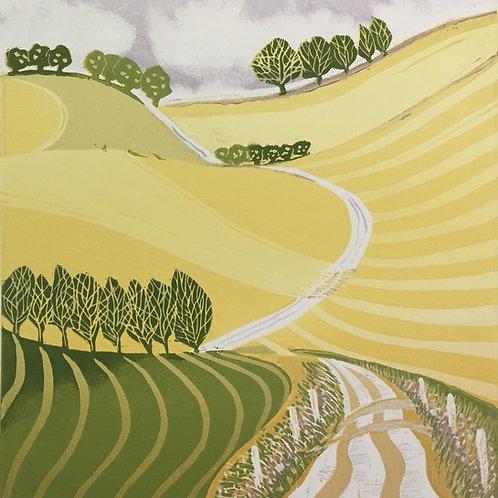 Ann Burnham - The Fields of Gold