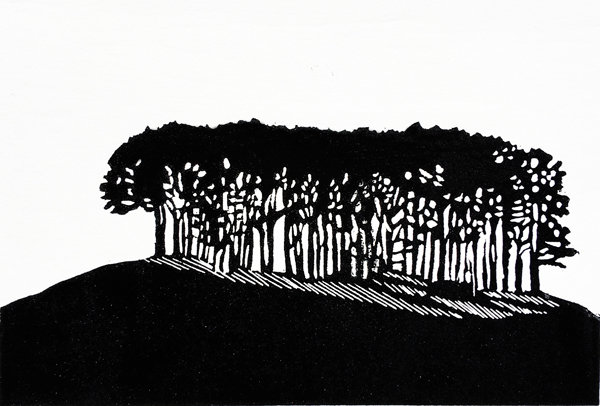 Copse on the Hill