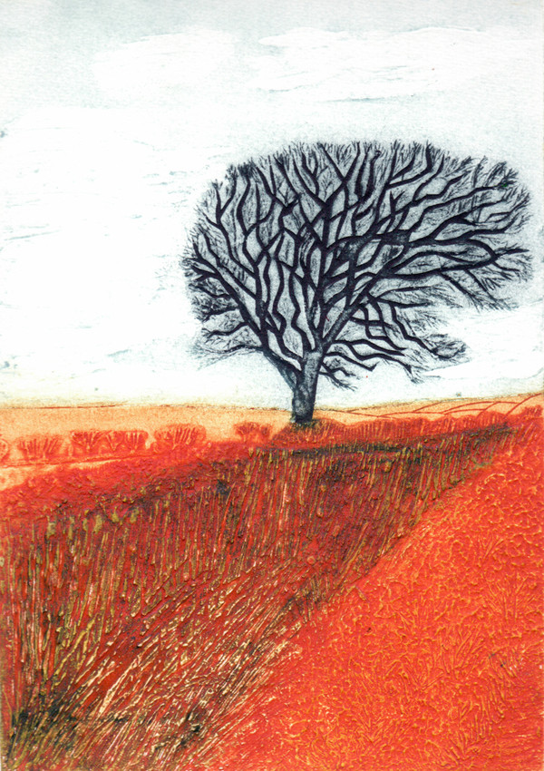 Field with a Tree