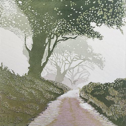 Ann Burnham - After the Rain