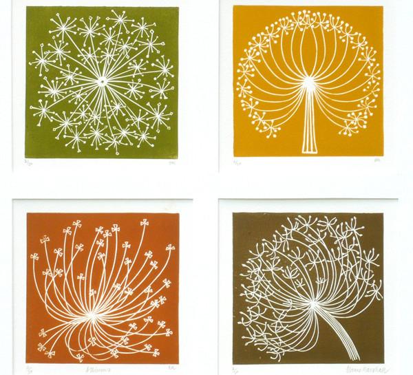 Elaine Marshall:-  Alliums