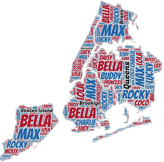 Map of New York City Dog Names