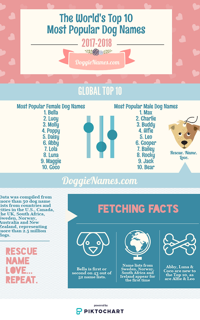 World's Top 10 Most Popular Dog Names