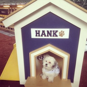 Milwaukee Brewers' Hank