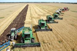 Сельскохозяйственные предприятия