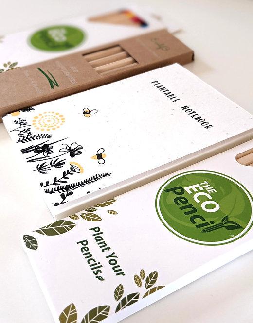"The ""Eco"" Box (A6)"