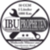 Team Logo Pille.jpg