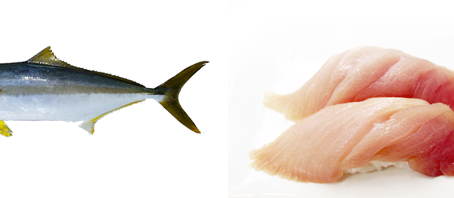 Do You Know What Your Fish Look Like?