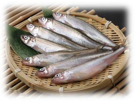 Rare Sushi Ingredients - Shishamo, Hokkaido, Japan