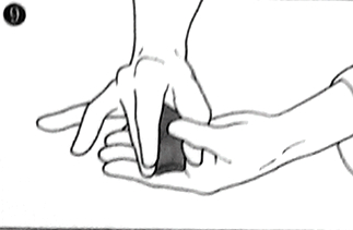Nigiri 9