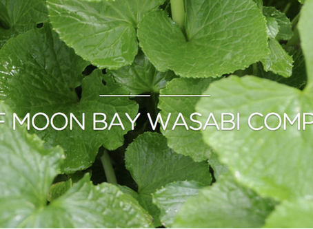 Where Can I Get Real Fresh Wasabi?