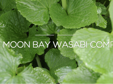 Where Can I Get Real Fresh Wasabi?