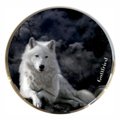 Evo 1 Wolf Weiß