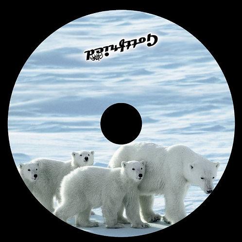 Evo 1 Eisbären