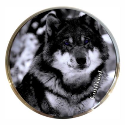 Evo 1 Wolf Dunkel