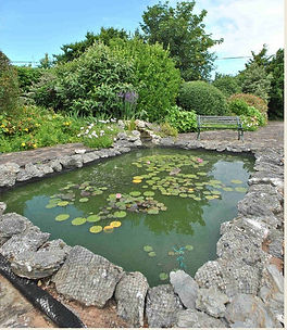 fish ponds.jpg