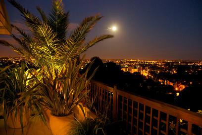 light-garden.jpg