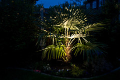 outdoor-garden-light-4.jpg