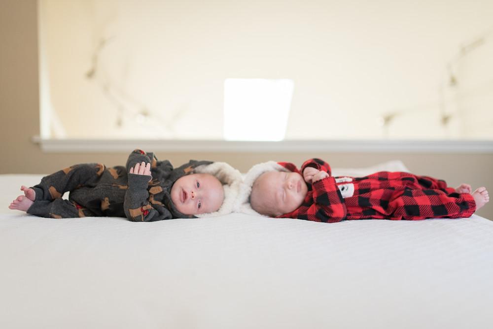 newborn twins portrait