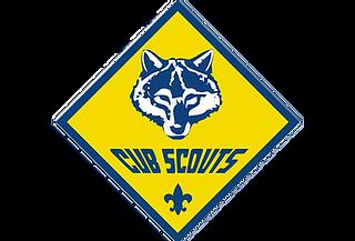 cub_scouts.png