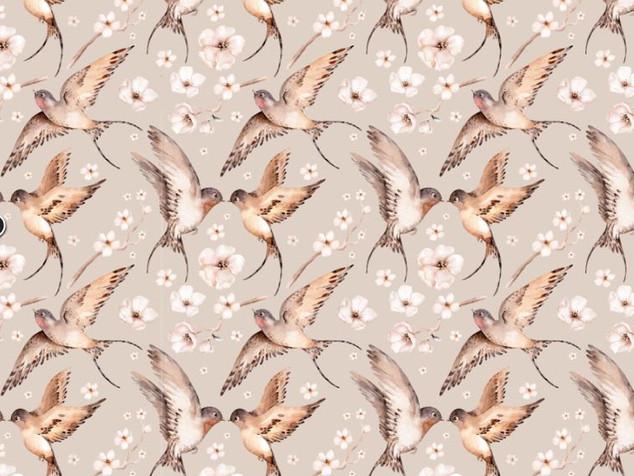 Oiseaux du printemps.JPG
