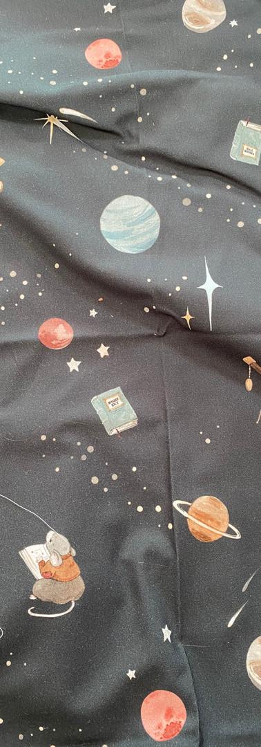 21 - Souris et cosmos (fond noir)
