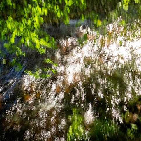 River Bovey