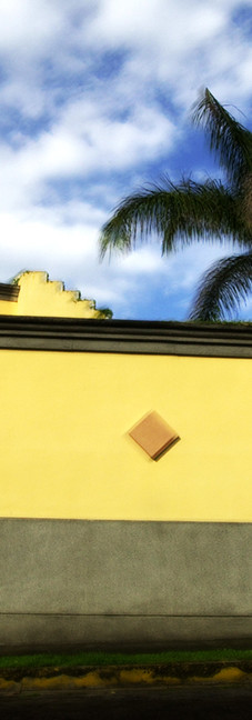 CR-San José mur j palm 01°.jpg