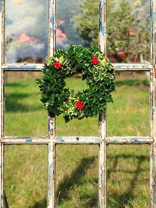 Mini Holly Combo Wreath