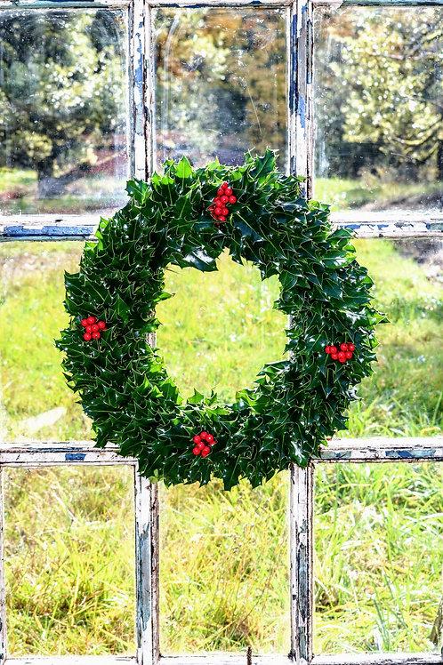 English Green Holly Wreath