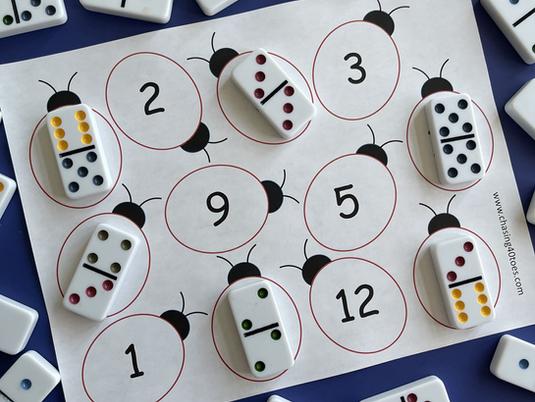 Ladybug Domino Match