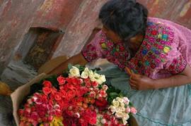 viaggio guatemala maya 2020.jpg