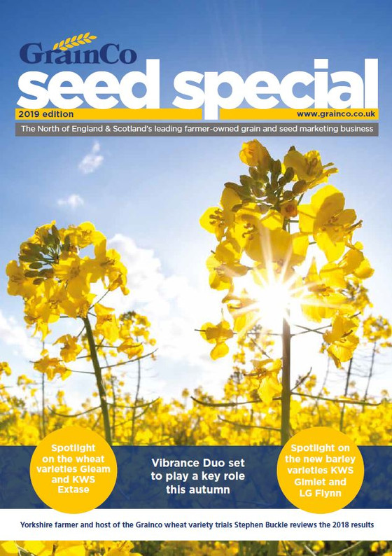 2019 Seed Special