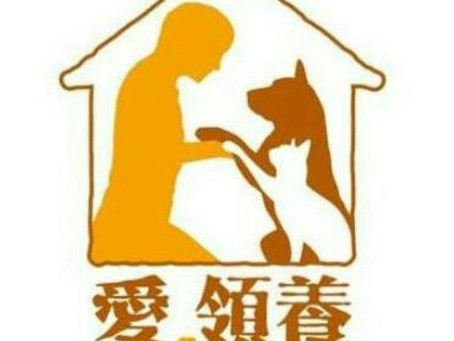 愛領養動物中心 Love adopt animal society
