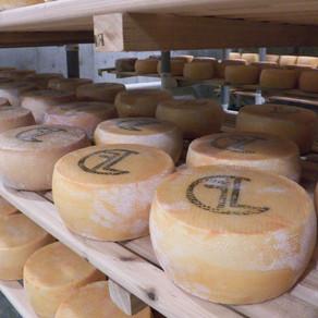 Flathead Lake Cheese - The Best Cheese In Montana