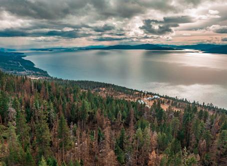 Beardance Trail - Convenient Hike with Nice Views