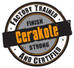 A Quick Guide to Choosing a Cerakote Applicator