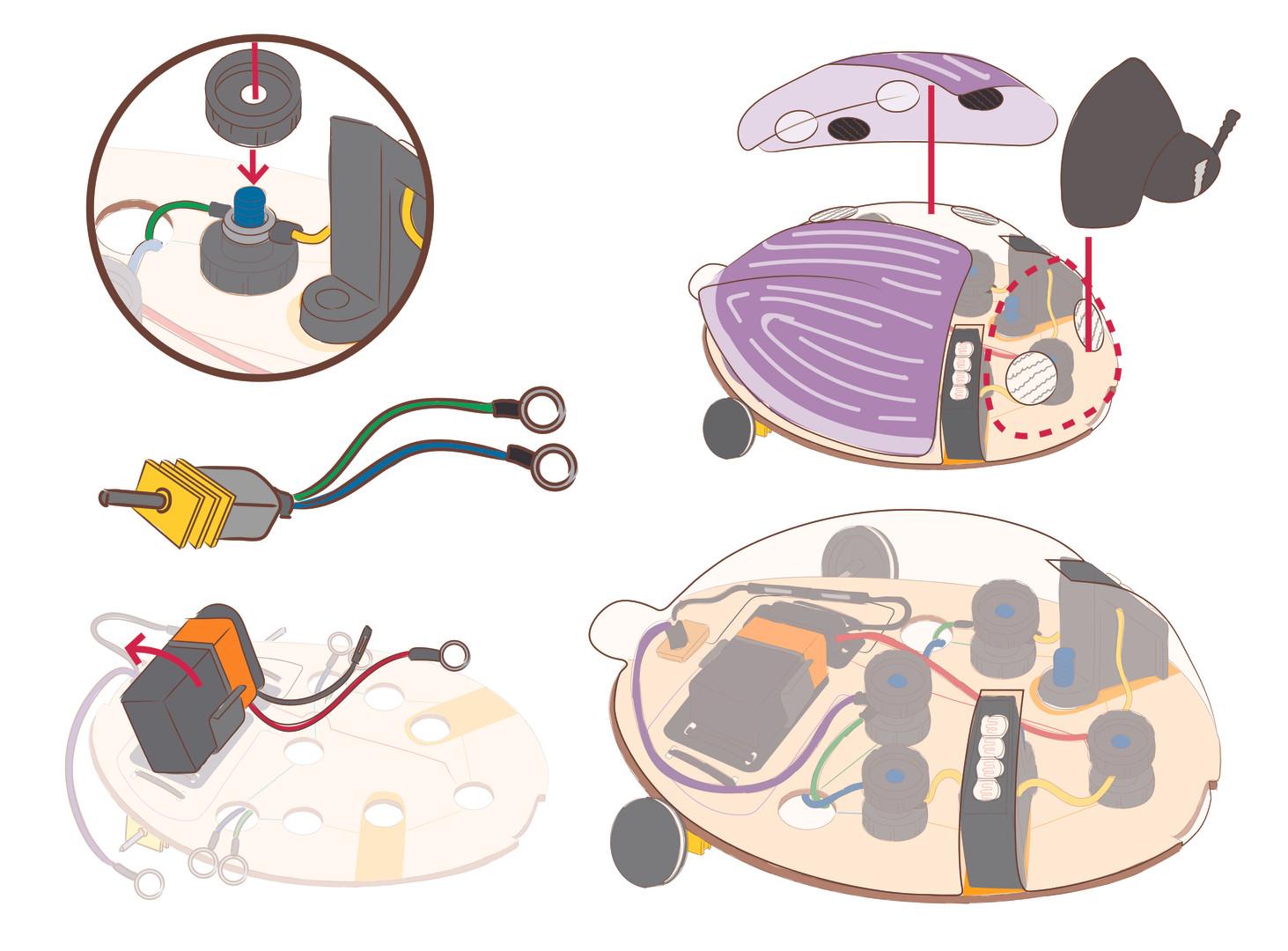 KiwiCo Shop Crate Illustrations