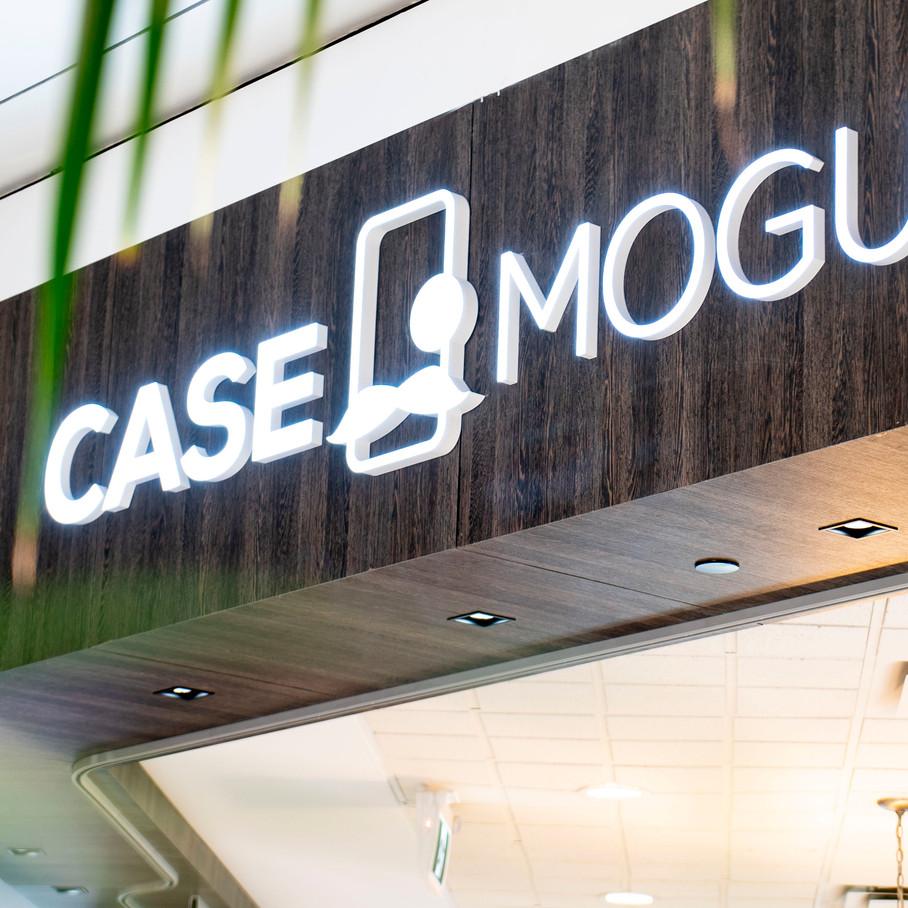 CaseMogul11.JPG