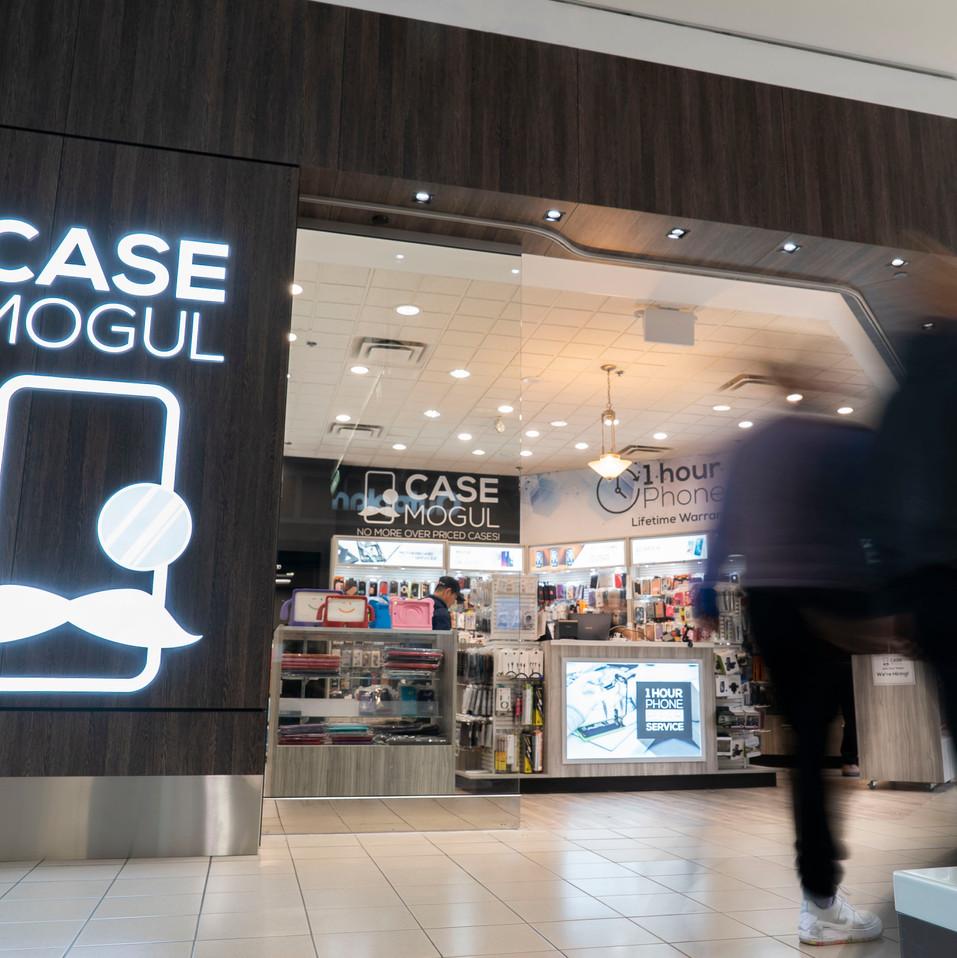 CaseMogul7.JPG