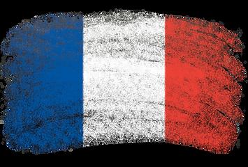 French Teacher GCSE