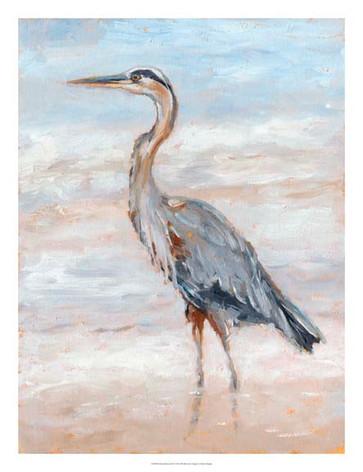 136048Z Beach Heron II.jpg